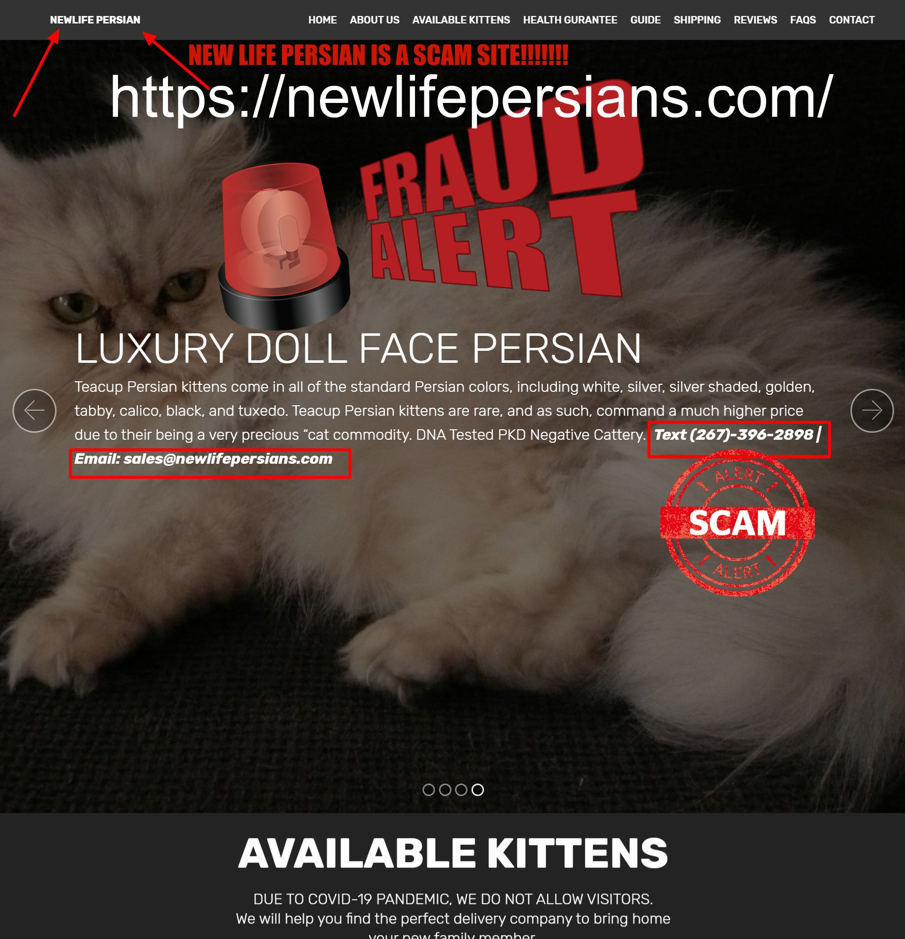 Newlife Persian Is a Scam Site
