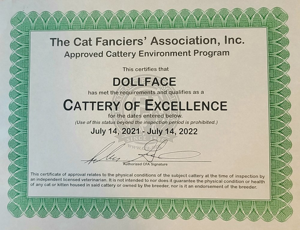 Cattery of Excellence